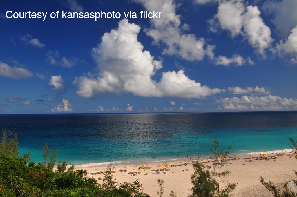 A vacation on a tropical beach